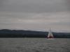 2016-regatta-17